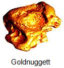 nokta-golden-sense-01